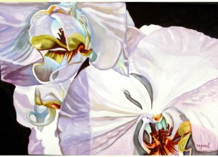 """#129 s Orchids'  28""""w x 22""""h, framed size  $350"""